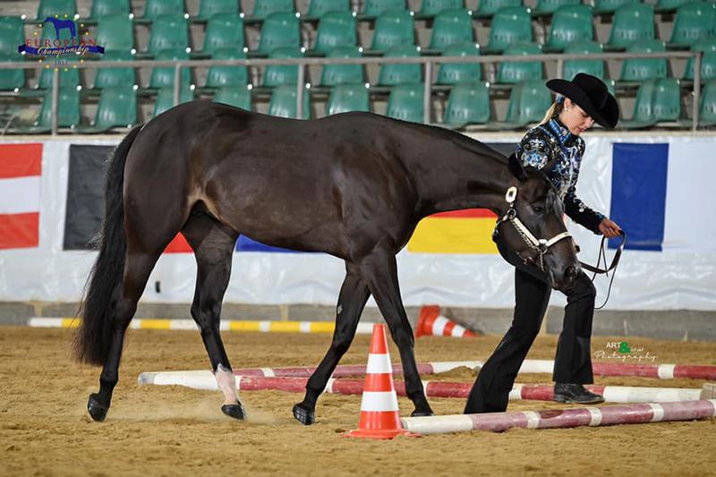 EC Quarter Horses 2021 in the books